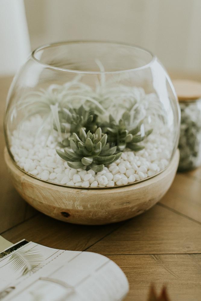 Weekend Project Diy Succulent Terrarium Pots Cella Jane
